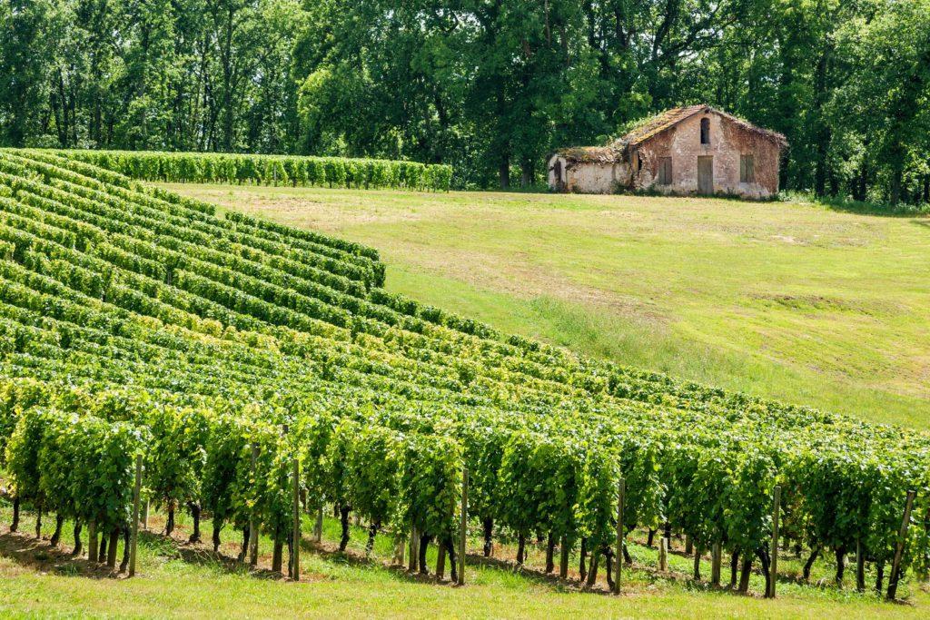 Groepsreis Frankrijk Champagne Groepsuitstap Verenigingen Bedrijven Familie Meerdaagse