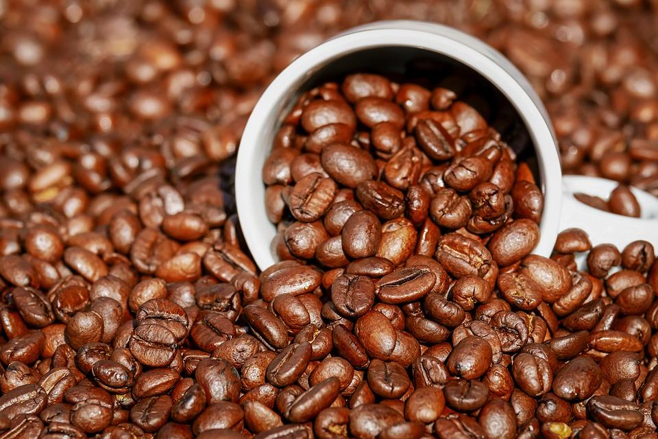 ANT 13 Koffie NIEUW geen copyright