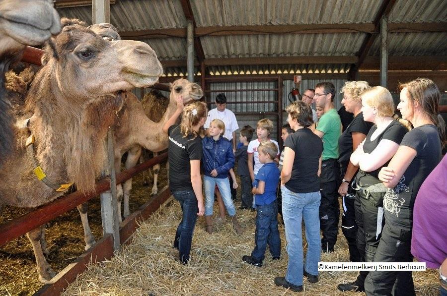 Groepsreis Nederland Berlicum Heusden Daguitstap Verenigingen Familie Bedrijven