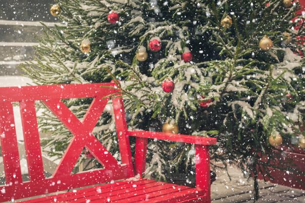 Groepsuitstap Groepsreis Individuele reizen Verenigingen Bedrijven Familie Kerstmarkt
