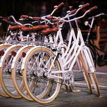 10/06 tot 13/06/21 FIETSEN LANGS DE MAAS meerdaagse fietsvakantie