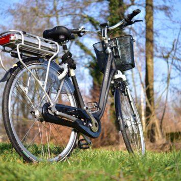 20/06/2021 DOORHEEN HET HOUTLAND & BRUGSE OMMELAND  fietsreis
